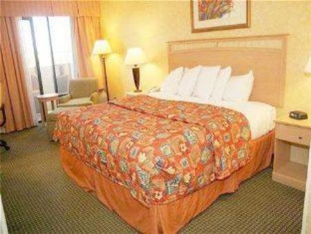 1 King Bed Deluxe Non-smoking Holiday Inn Phoenix West