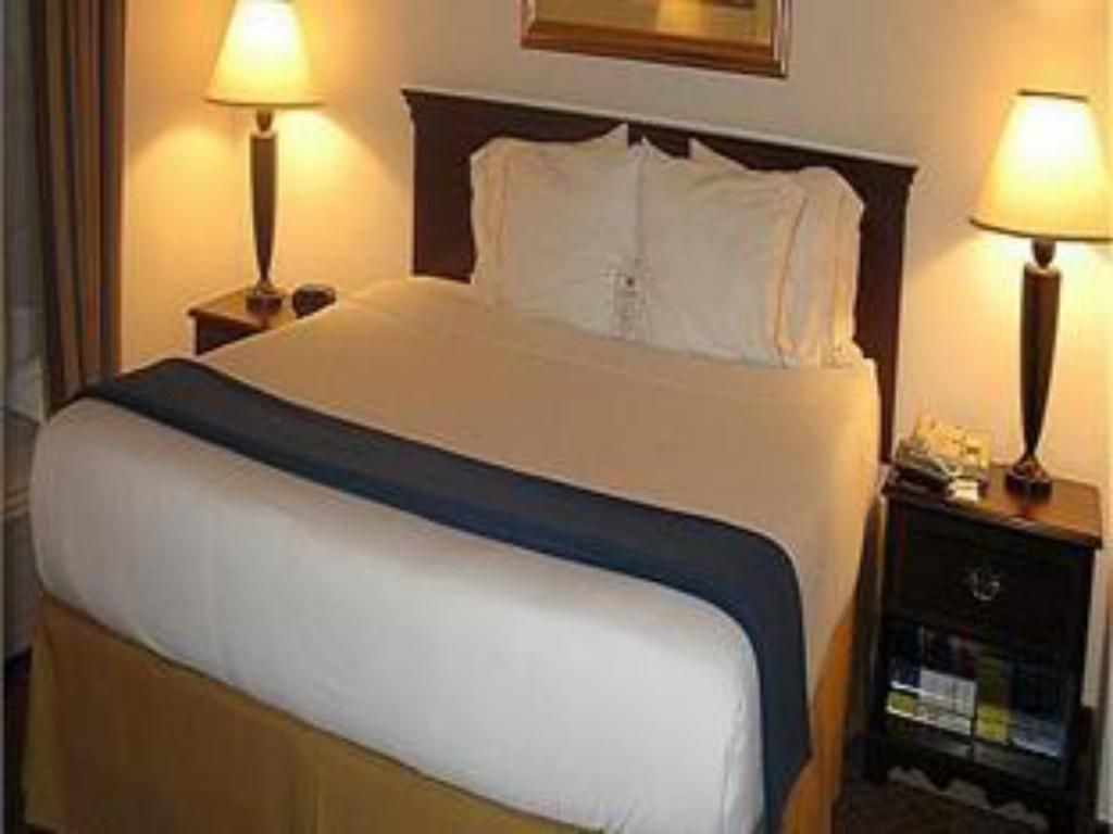 Standard - Katil Holiday Inn Express Hotel & Suites Houston-Downtown Convention Center