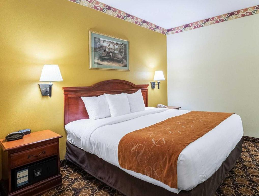 Standard Termasuk 1 Katil King - Katil Comfort Suites near Texas Medical Center - NRG Stadium