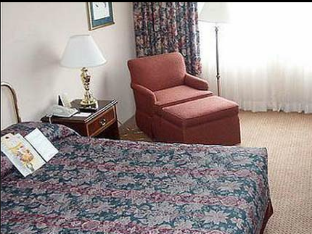 Standard - Quarto de hóspedes Holiday Inn New York-JFK Airport Area