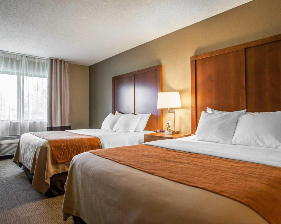 2 Queen Beds  Comfort Inn Moline - Quad Cities