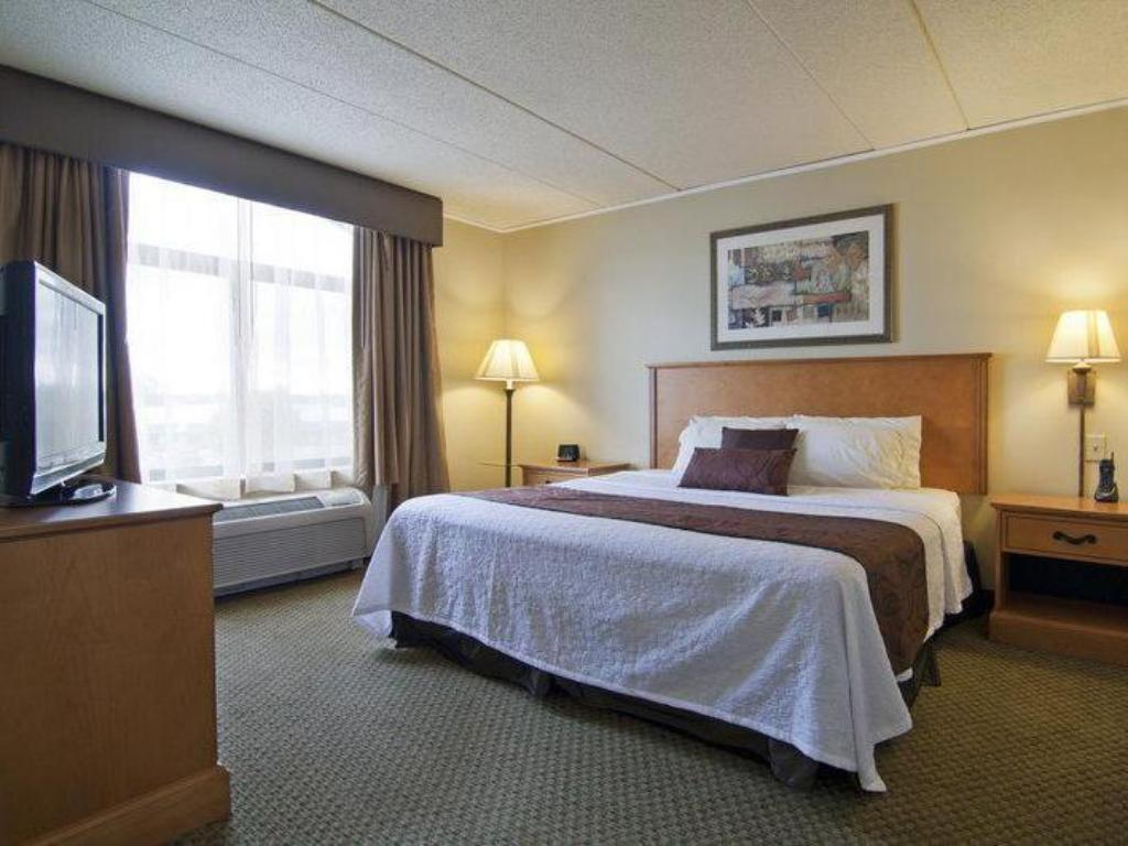 King-Zimmer - Zimmeransicht Best Western Plus Coon Rapids North Metro Hotel