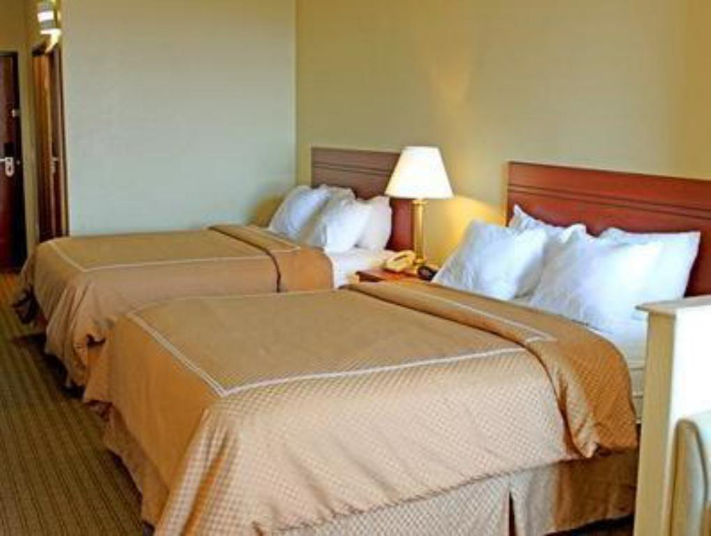 Quarto de hóspedes - Cama Quality Suites Downtown South (Quality Suites South )