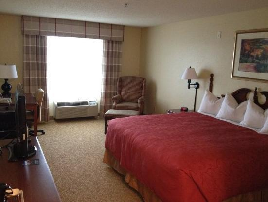 Room with King Bed and Roll-In Shower - Accessible (1 King Bed Accessible Roll In Shower)