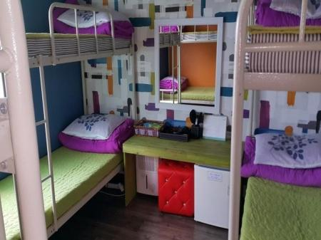 6-Bed Dormitory -- Female Only Handamnuri Guesthouse
