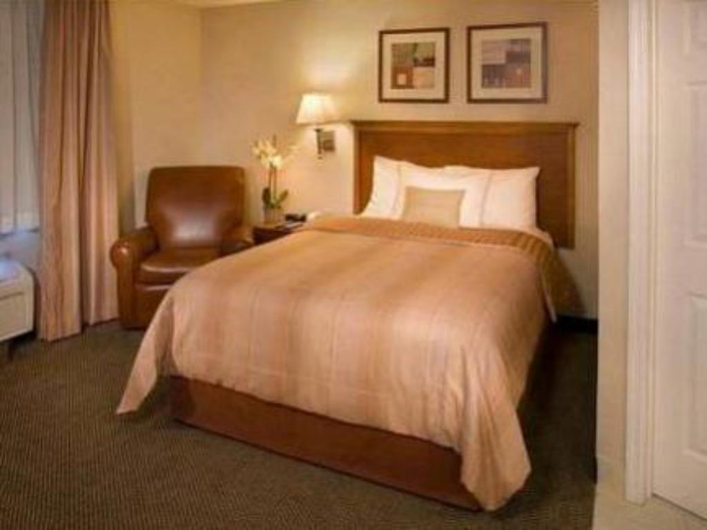 Standard Suite 1 Queen Bed Sofa Bed - Cama Candlewood Suites Albuquerque