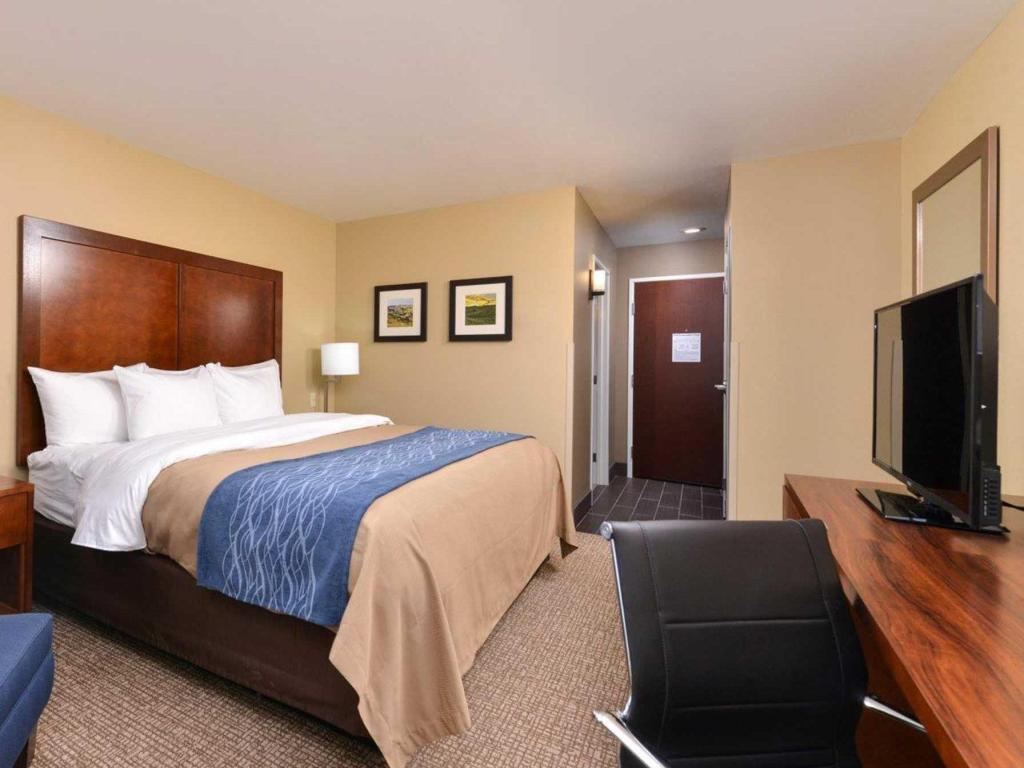 Standard with 1 King Bed - Bed Comfort Inn and Suites Mandan - Bismarck