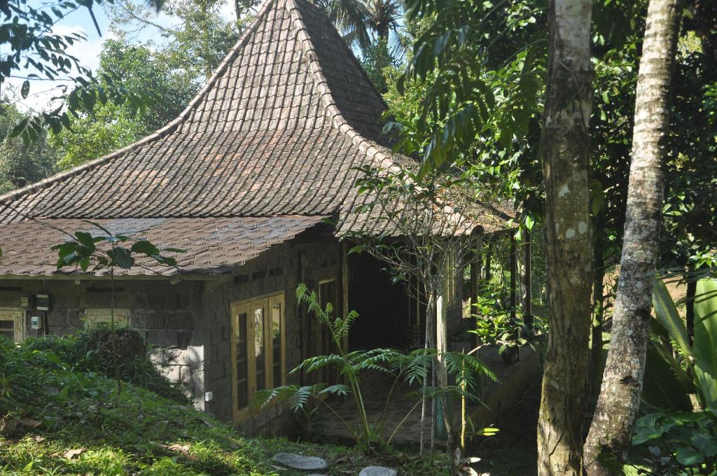 More about Tepi Sawah Lodge