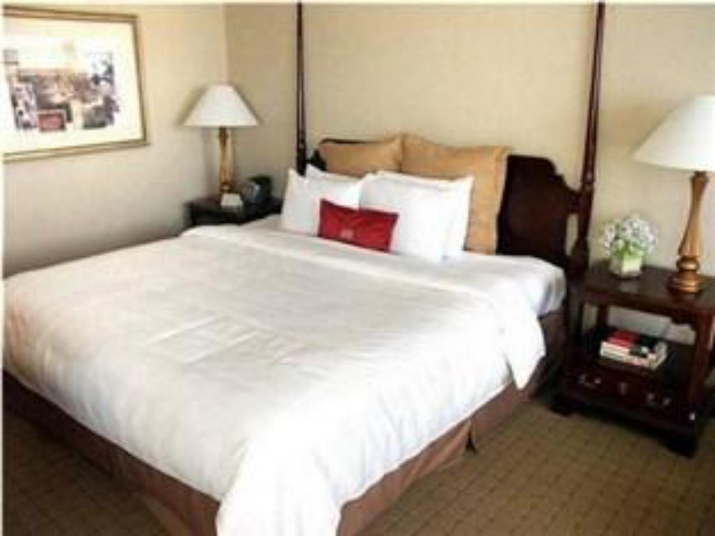 1 Double Bed Wheelchair Accessible Non-Smoking - Katil Crowne Plaza Hotel White Plains-Downtown
