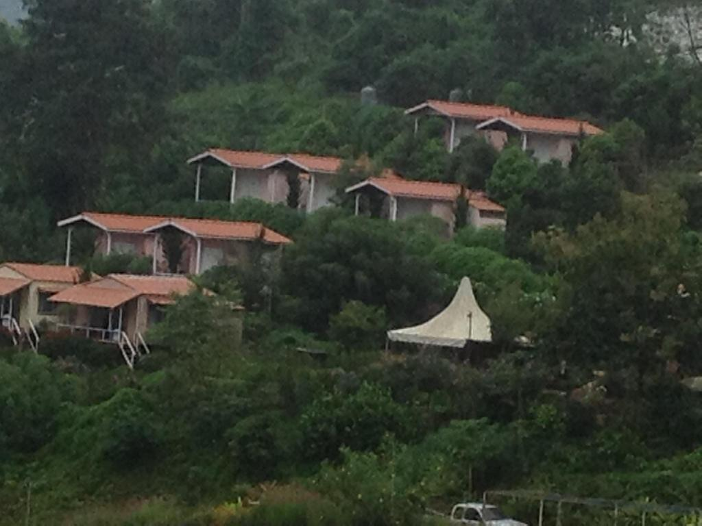 Best Price On Flora Hill Pongyang Resort In Chiang Mai Reviews