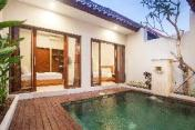 NEW! 2 Bedroom Private pool near Canggu #7