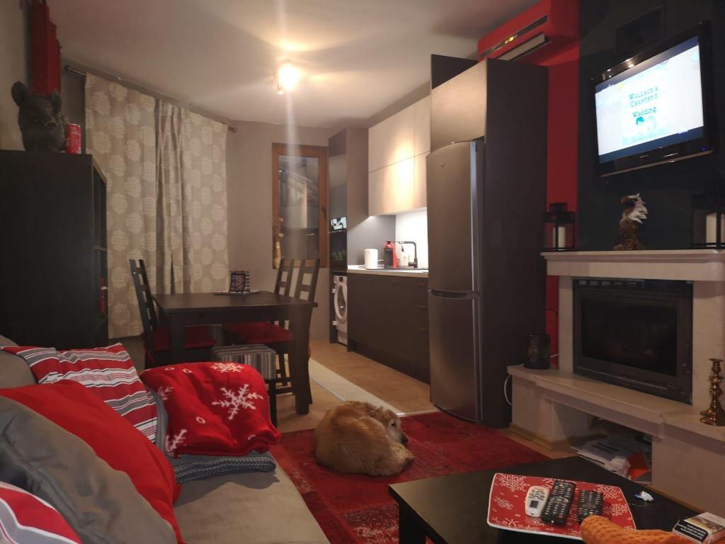 Апартаменты в банско квартиры в малаге купить