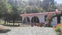 Pinewood Home Stay, Bhimtal, Nainital