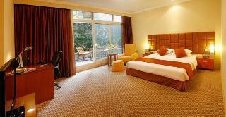 Business Double Room (Special promotion) (Business Double Room (special promotion))
